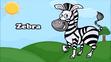 KLV Zebra