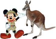Mickey meets red kangaroo