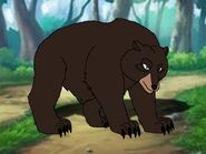 Rileys Adventures Cinnamon Bear