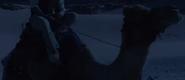 Aladdin 2019 Camel