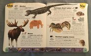 Extreme Animals Dictionary (16)