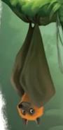 Fruit Bat in LK 2019 Hakuna Matata