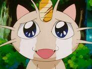 Meowth shedding tears