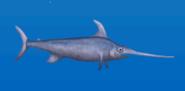 Swordfish TB