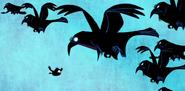 TatLoNB Ravens