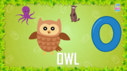 Baby Time Owl