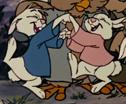 Rabbits hurray 5