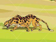 Rileys Adventures African Leopard
