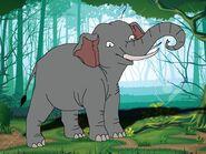 Rileys Adventures Sumatran Elephant
