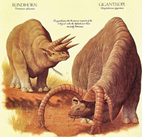 Gigantelope