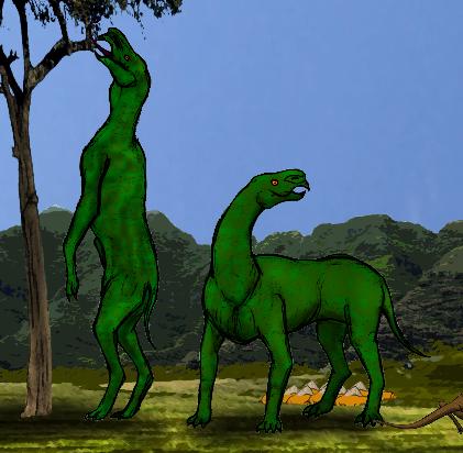 All Todays Paraceratherium