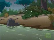 Crocodile Invested River