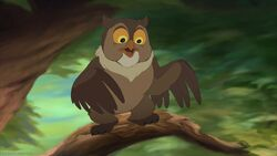 Friend Owl.jpg
