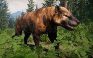 Hyaenodon 2