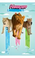 PPL2016 Poster
