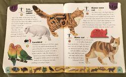 Pet Dictionary (14).jpeg