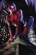 4366424-spider-man 2002 6106 poster