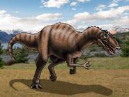 Dm carcharodontosaurus