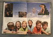 Mammals (Eye Wonder) (1)