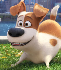Max in The Secret Life of Pets-1.jpg