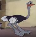 P-1942-11-20-ostrich