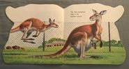 The Zoo Book (9)