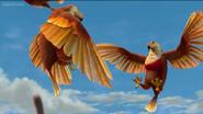 AHKJ Hawks