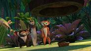 LemursThreetastetest