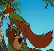 Robin hood climbing up 4