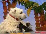 Stinky the Skunk crying in Jim Henson's Animal Show: Rhino & Gorilla