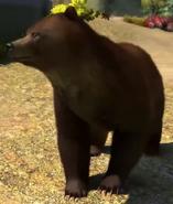 Gobi-bear-zootycoon3