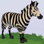 Grévy's Zebra WOZ