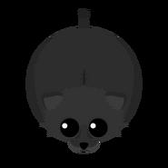 Mopeio Black Lioness