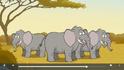 Nature Cat African Elephants