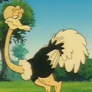 Ox-tales-s01e028-ostrich
