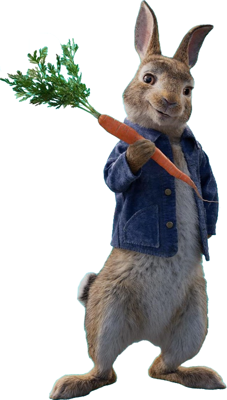 The Many Adventures of Peter Rabbit