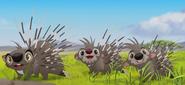 Porcupine TLG
