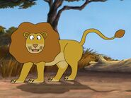 Rileys Adventures Congo Lion
