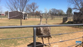 Rolling Hills Zoo Ostrich