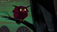 SJ Owl