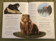 Endangered Animals (Over 100 Questions and Answers to Things You Want to Know) (6)