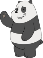 Panda (WBB)