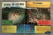 Predator Splashdown (11)