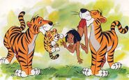 Tigers-in-baby-animals-from-disney-discovery-series
