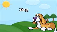KLV Dog