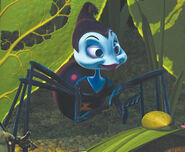 Rosie-bugs-life-photo-450x370-dcp-ab9 9select16281