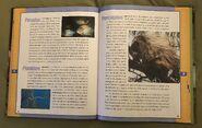 Scholastic Encyclopedia Of Animals (40)