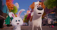 Secret-life-pets-disneyscreencaps.com-8082