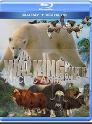 WWARA Poster.png