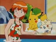 Misty Pokemon Double Trouble 2
